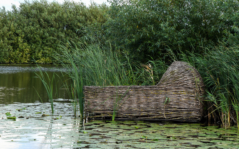 Floating wooden cradle basket in lily pads in Kinderdijk Netherlands © 14ktgold | Adobe